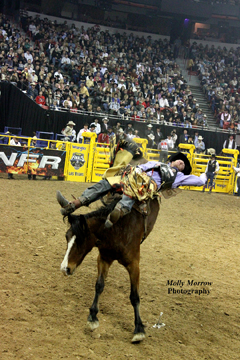 2010 Bareback contestant is Joe Gunderson, from Agar, SD on DH Cattle's Working Girl, by Molly Morrow