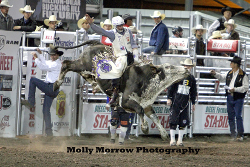 Kanin Asay from Powell, Wyoming became the first man in the 10 year history of the Xtreme Bulls Tour to win a second championship